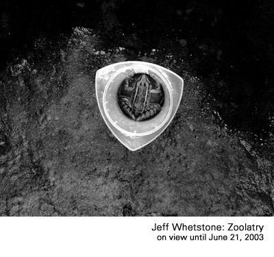jeff-whetstone.jpg