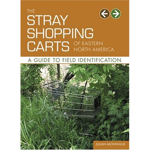 julian-montague-stray-shopping-carts.jpg