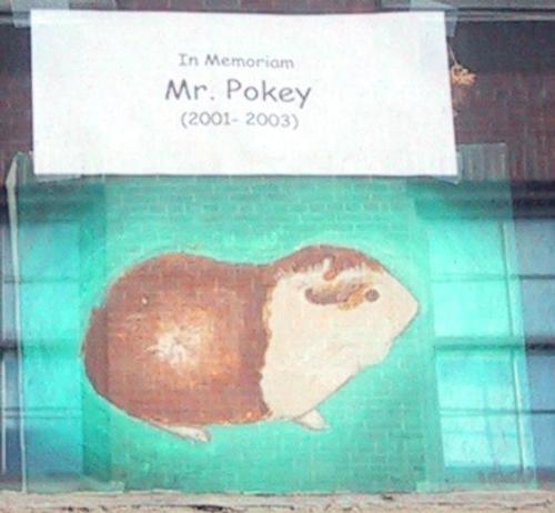 in memoriam mr pokey