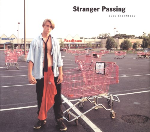sternfeld_stranger_passing.jpeg
